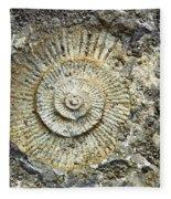 Fossil Geology Fleece Blanket