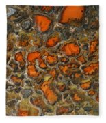 Fossilized Dinosaur Bone Fleece Blanket
