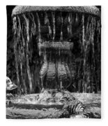Fountain Fleece Blanket