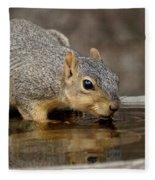 Fox Squirrel Fleece Blanket