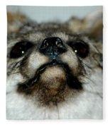 Foxy Eyes Fleece Blanket