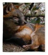 Foxy's Naptime Fleece Blanket