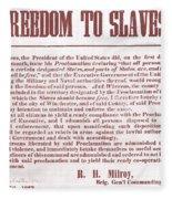 Freedom To Slaves Fleece Blanket