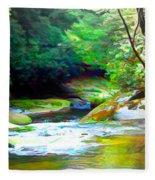 French Broad River Filtered Fleece Blanket