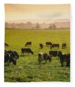 Friesian Cattle Cattle Grazing Fleece Blanket