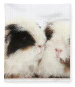 Frizzy Alpaca Guinea Pigs Fleece Blanket