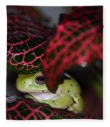 Frog On A Leaf Fleece Blanket