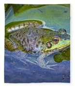 Frog Resting On A Lily Pad Fleece Blanket