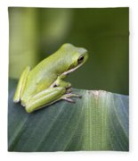 Froggie On A Leaf Fleece Blanket