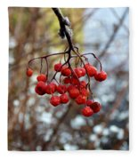 Frozen Mountain Ash Berries Fleece Blanket