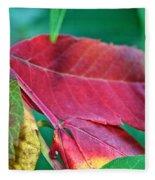 Full Spectrum Sumac Fleece Blanket