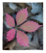 Fushia Leaf 2 Fleece Blanket