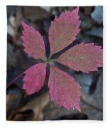 Fushia Leaf Fleece Blanket