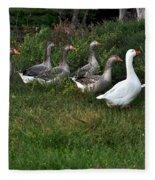 Gaggle Of Geese Fleece Blanket