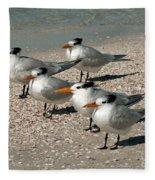 Gaggle Of Gulls Fleece Blanket
