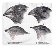 Galapagos Finches Fleece Blanket