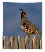 Gambel's Quail  Fleece Blanket
