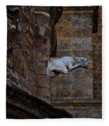Gargoyle Fleece Blanket