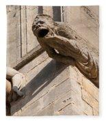 Gargoyles On Ely Cathedral Fleece Blanket