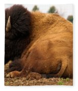 Gentle Giant Fleece Blanket