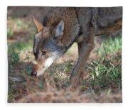 Gentle Wolf Fleece Blanket