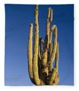 Giant Saguaro Cactus Portrait With Blue Sky Fleece Blanket