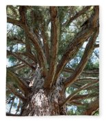 Giant Sequoias Fleece Blanket