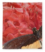 Giant Swallowtail - 3 Fleece Blanket