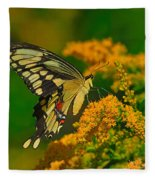Giant Swallowtail On Goldenrod Fleece Blanket
