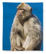 Gibraltar Barbary Macaque Macaca Fleece Blanket