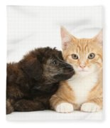 Ginger Kitten And Toy Poodle Fleece Blanket