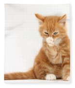 Ginger Kitten Fleece Blanket