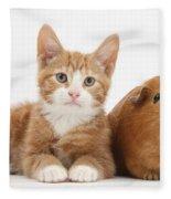 Ginger Kitten With Red Guinea Pig Fleece Blanket