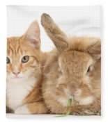 Ginger Kitten With Sandy Lionhead-cross Fleece Blanket