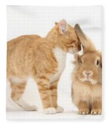 Ginger Kitten With Sandy Lionhead Rabbit Fleece Blanket