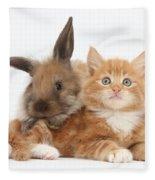 Ginger Kitten Young Lionhead-lop Rabbit Fleece Blanket