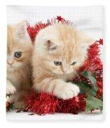 Ginger Kittens Fleece Blanket