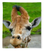 Giraffe In The Park Fleece Blanket