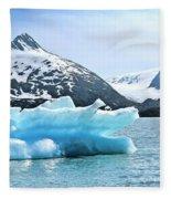Glacier Remnants Fleece Blanket