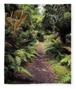 Glanleam, Co Kerry, Ireland Path In The Fleece Blanket