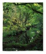 Glengarriff River, County Cork, Ireland Fleece Blanket