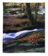 Glenmacnass Waterfall, Co Wicklow Fleece Blanket