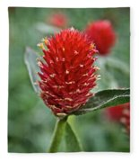 Globe Amaranth Fleece Blanket