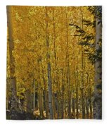 Glorious Aspens Fleece Blanket
