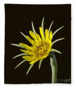 Goatsbeard Fleece Blanket