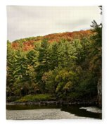 Gold Trimmed Trees Fleece Blanket