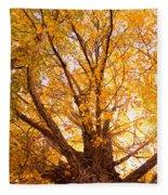 Golden Autumn View Fleece Blanket