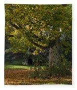 Golden Cappadocian Maple. Fleece Blanket
