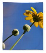 Golden Daisy On Blue Fleece Blanket