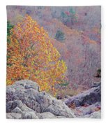 Golden Poplar Among The Rocks At Johnsons Shut Ins State Park Fleece Blanket